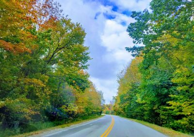 Early Signs of Fall on a Windy Road || by AG Fotography