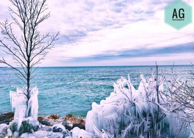 Frosted Twigs along the coast || by AG Fotography