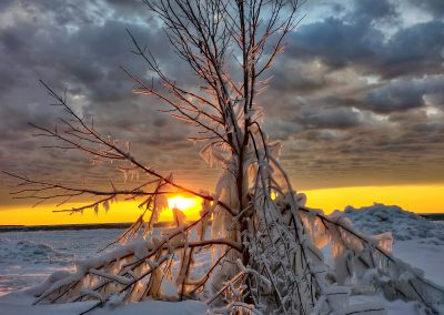 Sunset behind frozen branches along a frozen lake || AG Fotography